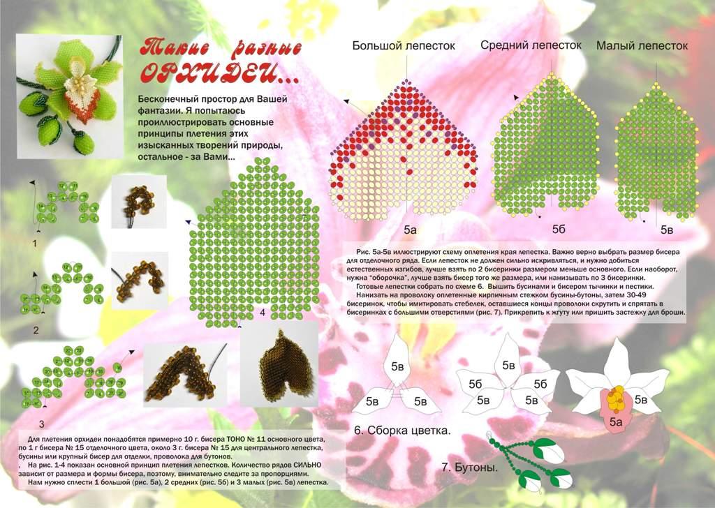 Орхидея из бисера схема плетения мастер класс